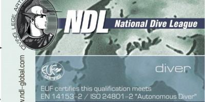 Базовый курс  Diver NDL