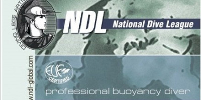 Курс Professional Buoyancy Diver NDL