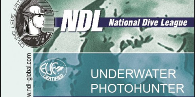 Курс NDL Underwater Photohunter